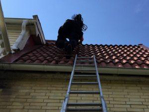 屋根の点検・調査