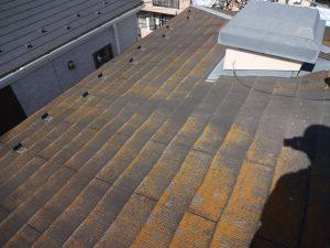 コケが生えたスレート屋根
