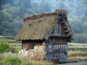 劣化した茅葺屋根